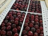 Cherry from sunny Uzbekistan - фото 8