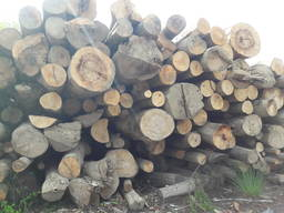 Дрова / Firewood / Brennholz - photo 7