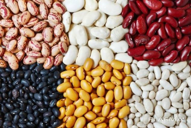 Fazole, lněná semena, čočka, cizrna, hrášek a jiné zemědělské produkty.