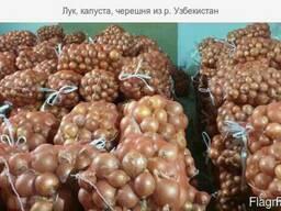 Лук, капуста, Черешня из р. Узбекистан