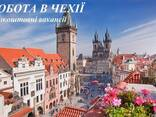 Оформление Чешских рабочих виз. - фото 2