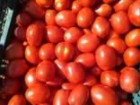 Продаем овощи в ассортименте. - фото 7