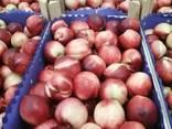 Сербские фрукты и овощи - photo 1