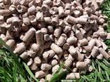 Fuel pellets briquettes - фото 4