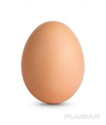 Яйца куриные категории С оптом
